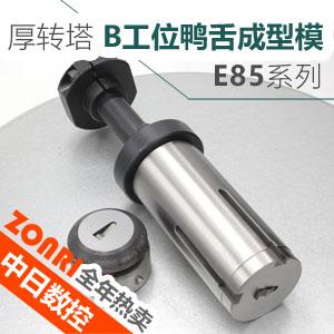 厚转塔E85B工位鸭舌成型模